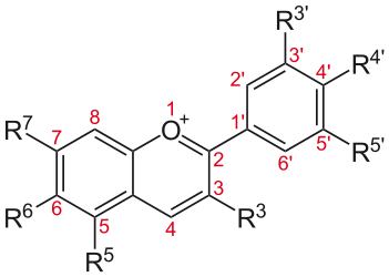 anthocyanin structure, source Wikipedia